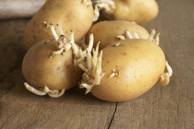 How to know when potatoes go bad?