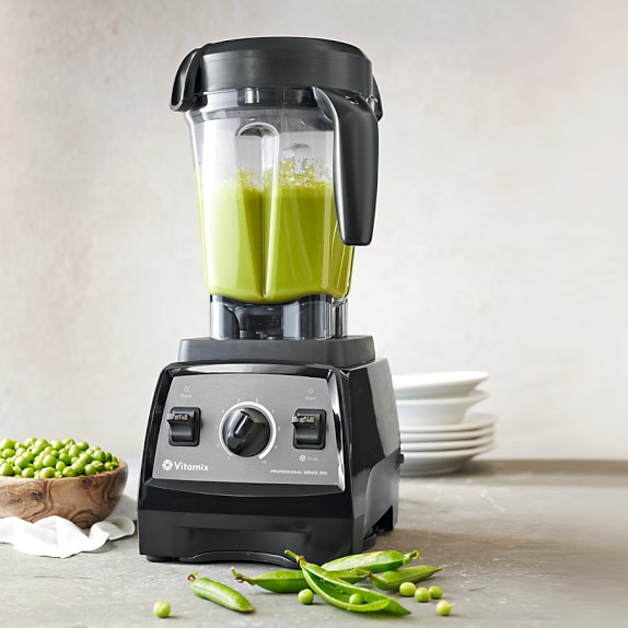 vitamix 300 review