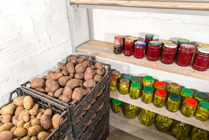 how to store potatoes safety