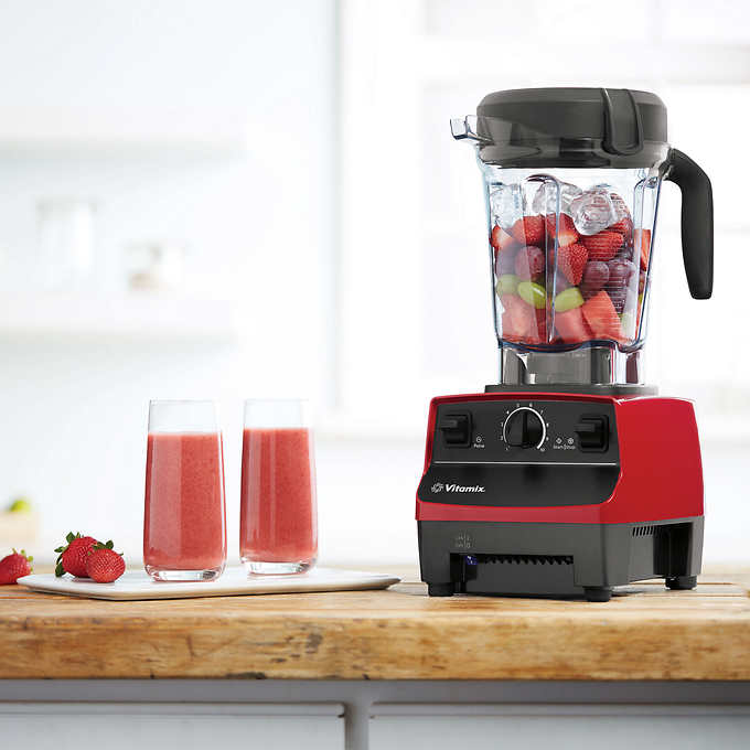 vitamix 5300 reviews