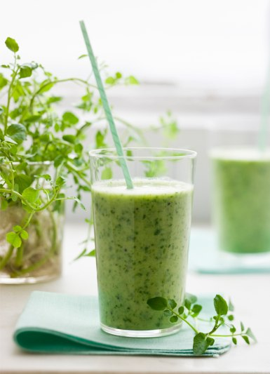 best smoothies for ance