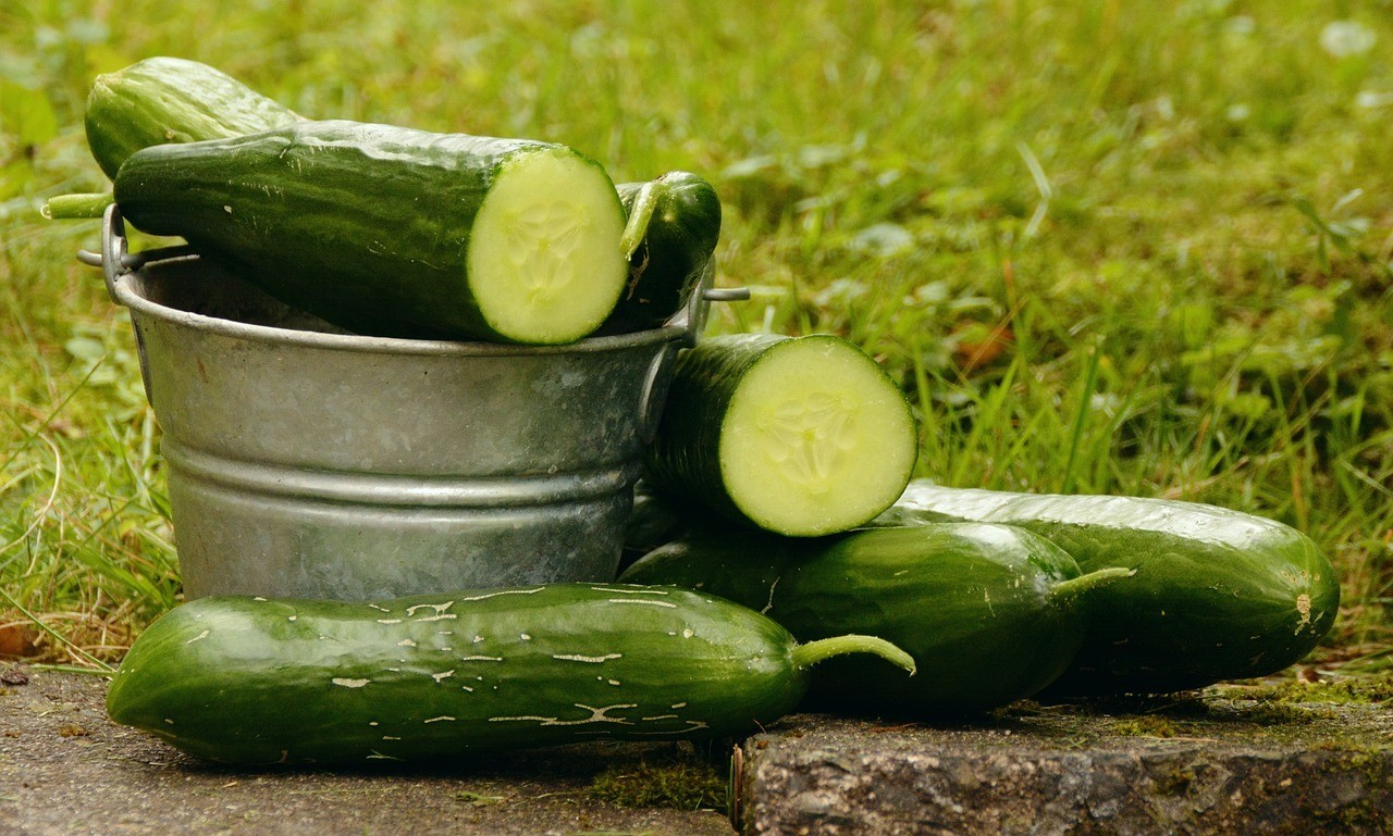 What will happen if you start drinking cucumber water?